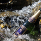 Champagne Arlaux Torrent
